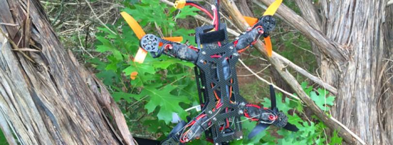 Drone In A Tree